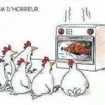 poulet_horreur